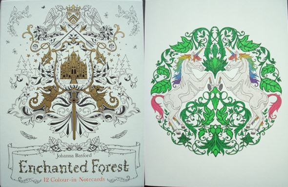 Enchanted Forest 12 Colour In Notecards A Review