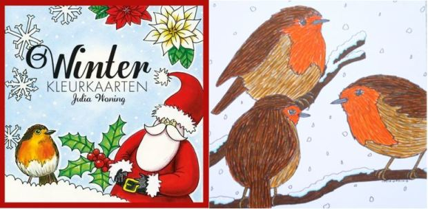 Winterkleurkaarten by Julia Woning - Check out my review, photos and video flick through